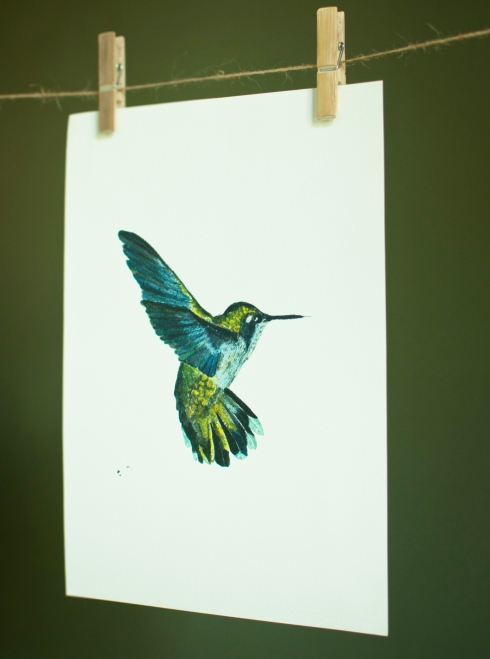 hummingbird_skuins