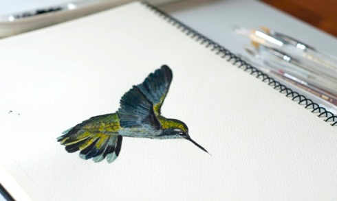 hummingbird in acrylic